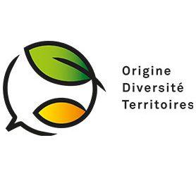 Origin for Sustainability