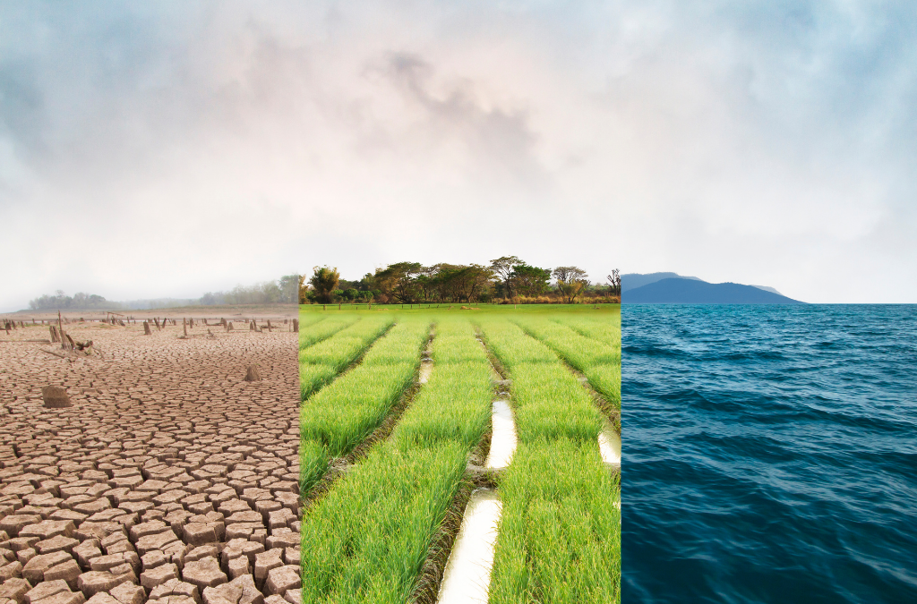 A new EU Strategy on Adaptation to Climate Change