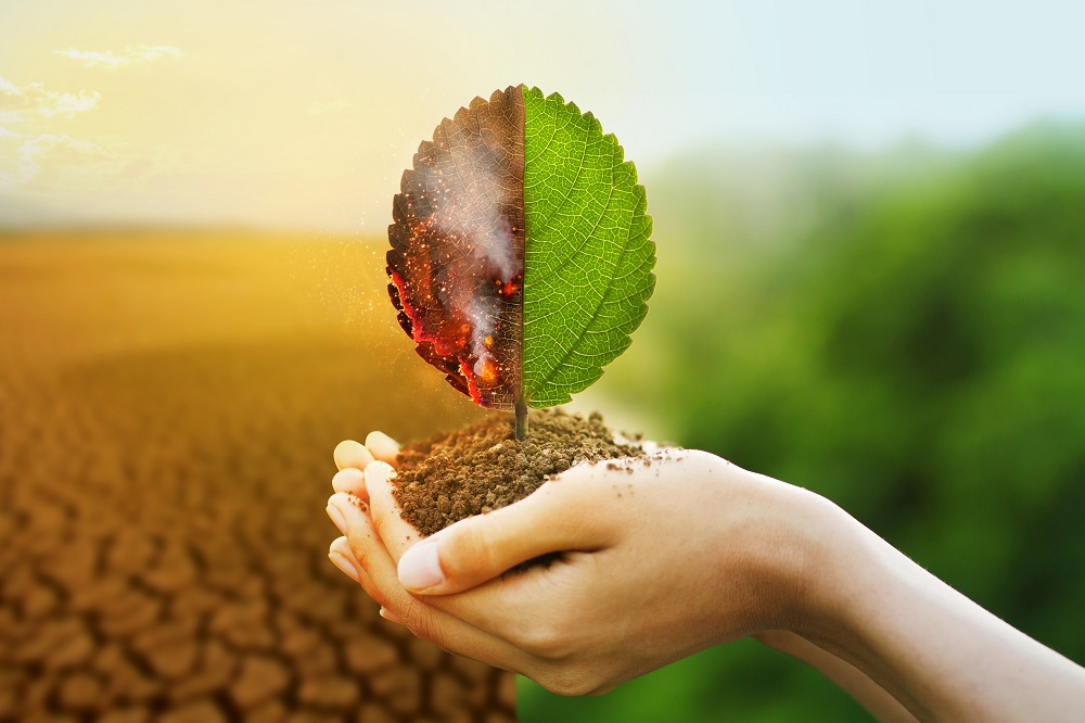 Strategies and challenges for climate change mitigation