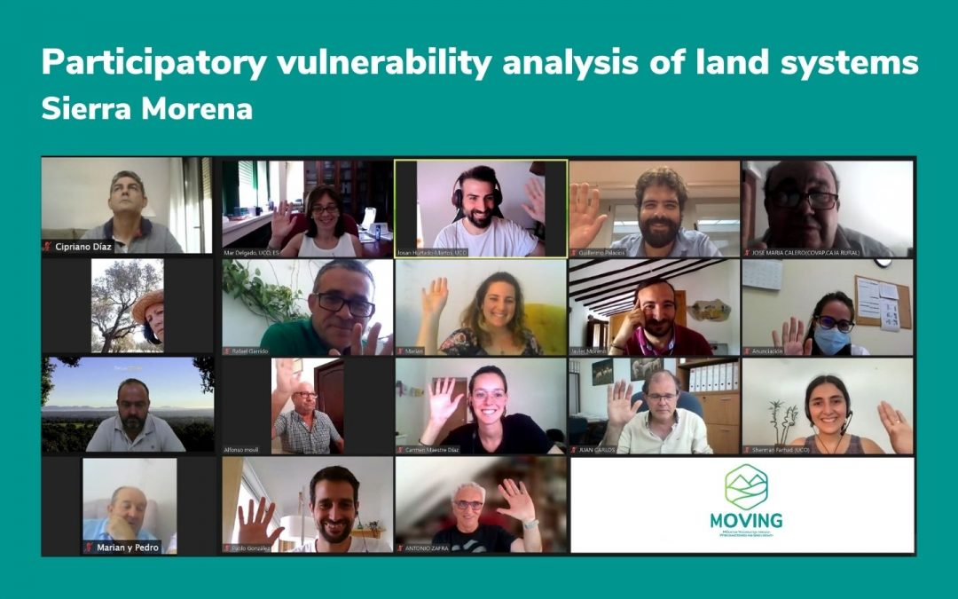 Participatory vulnerability analysis in the Reference Region of Sierra Morena